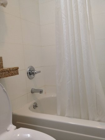 Comfort Inn Brooklyn: shower stall - clean enough