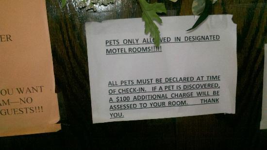 Olive Hotel: Pet Restriction Sign