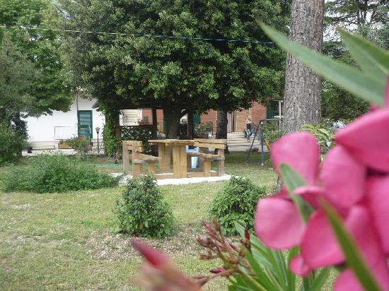 Camere Villa Alessandra: Giardino-Garden
