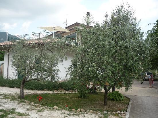 Camere Villa Alessandra: Il B&B - The B&B