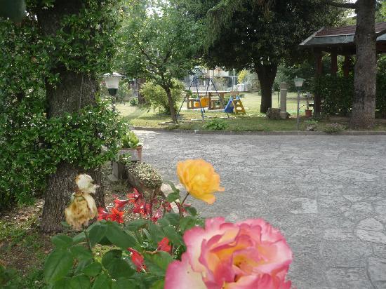 Camere Villa Alessandra: Giardino- The garden