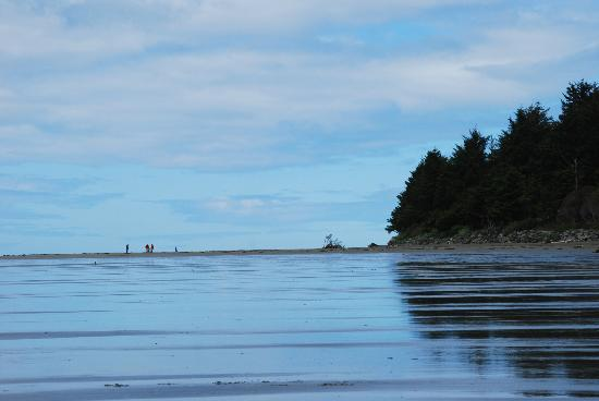 Chesterman Beach: long lovely sandy beach