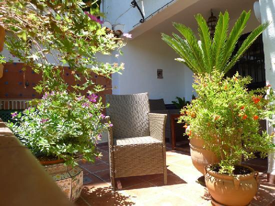 Las-Tres-Terrazas: Ma terrasse