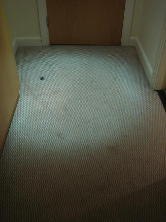 Hilton Dublin Airport Hotel: Scruffy carpet