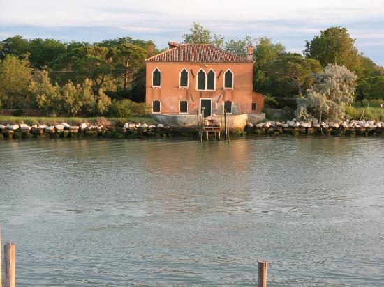 Venissa - Wine Resort: View from room