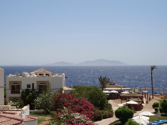 Otium Hotel Amphoras: Blick auf Tiran Island