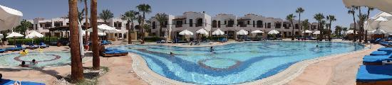 Otium Hotel Amphoras: Palmpool