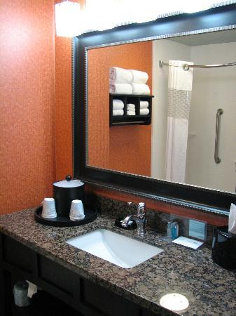 Hampton Inn St. Simons Island : Bathroom