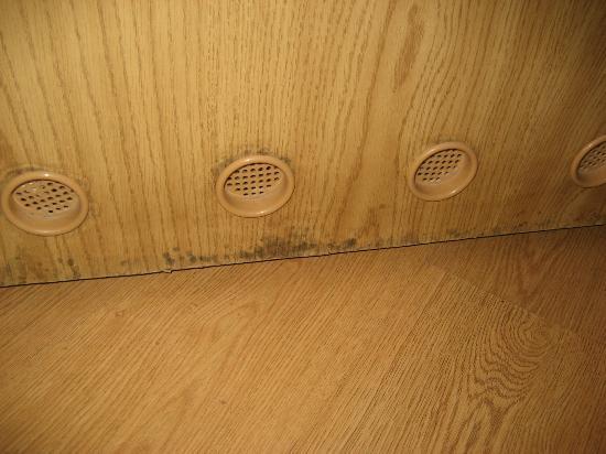 Osrodek Wczasowo-Rehabilitacyjny Graal: Zagrzybione drzwi - skutek źle wyprofilowanej podłogi