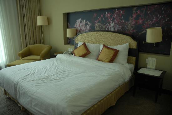 라 사피네트 호텔 달랏 사진