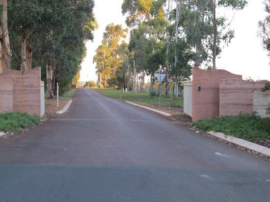 Cape Mentelle Wines: The driveway leading to the Cellar Door