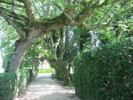 Relais & Chateaux - Hostellerie de Levernois : Boulevard to Pavillion