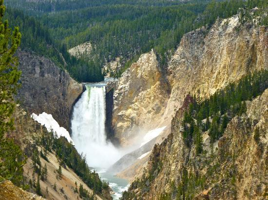 Lower Yellowstone River Falls: Lower Falls from Artist's Point, June 2012