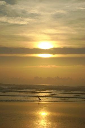 Praia de Ibiraquera: Nascer do sol em Ibiraquera