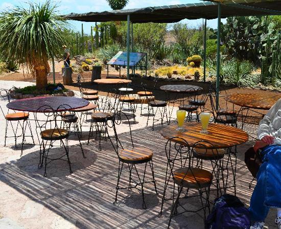 Ogród Botaniczny El Charco del Ingenio: Refreshments