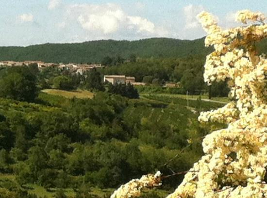 La Treille Muscate : View of the hotel, village from Mirmande
