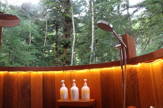 Clayoquot Wilderness Resort 사진