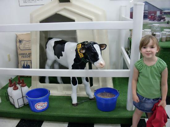 Dairy View: Fake cow.