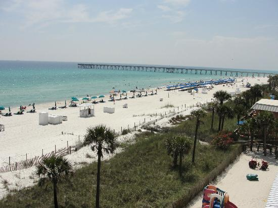 view from our balcony picture of osprey on the gulf. Black Bedroom Furniture Sets. Home Design Ideas
