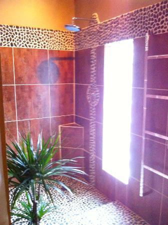 Hotel Troiz : Shower in a garden environment