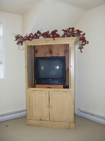 Lodgings at Pioneer Lane: Leaf Room TV.