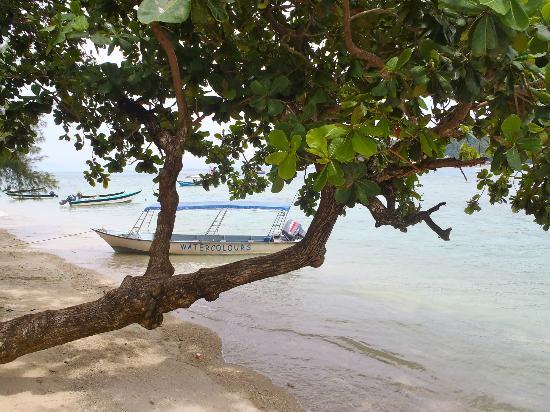 Perhentian Paradise Resort: dive boat