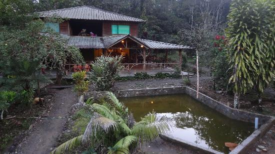 Suchipakari Amazon Rainforest Ecolodge : The front of the lodge