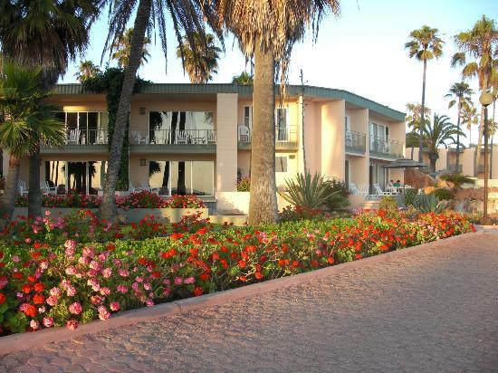 Estero Beach Hotel & Resort: Hotel grounds