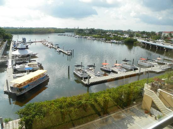 Bayfront Inn 5th Ave: THE BOAT HARBOR VIEW