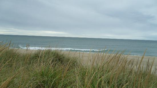 Cisco Beach: Ocean