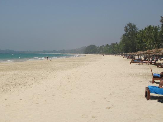 Ngapali Beach: Miles and Miles of the same.