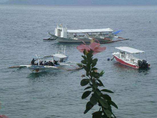 El Galleon Beach Resort & Hotel: View of the dive boats.