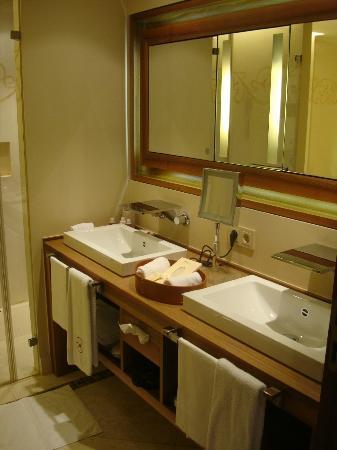 Wald & Schlosshotel Friedrichsruhe: Bathroom sink