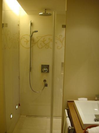 Wald & Schlosshotel Friedrichsruhe: Shower