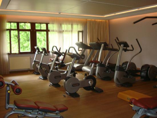 Wald & Schlosshotel Friedrichsruhe: Gym