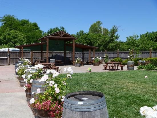 Larson Family Winery : Grounds