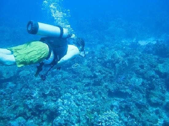 Isla Desecheo : 7