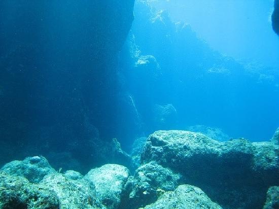 Isla Desecheo : 8