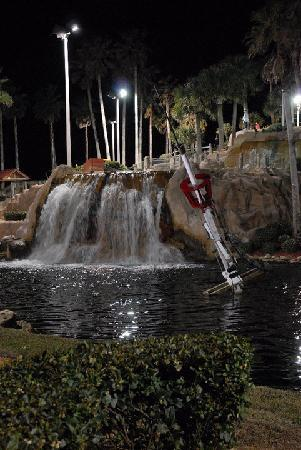 Pirate's Cove Adventure Golf : Pirate's Cove, Ormond Beach
