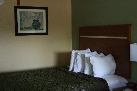 Baymont Inn & Suites Pigeon Forge: June 12, 2012 :: Bed