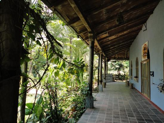 Rio Mopan Lodge: Patio Area