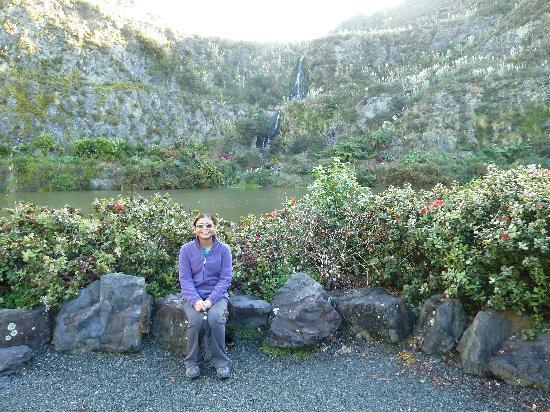 Whangarei Quarry Gardens: Quarry Gardens