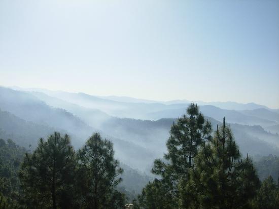 Club Mahindra Binsar Valley: REAL BINSAR
