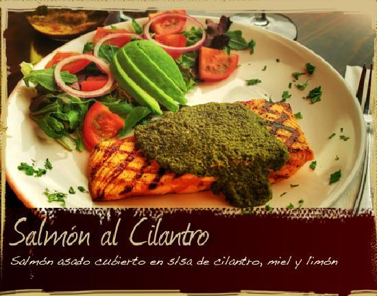 Restaurante Hornero : Salmon al Cilantro
