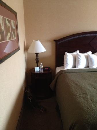 Quality Inn & Suites Airport: bedside table and decor