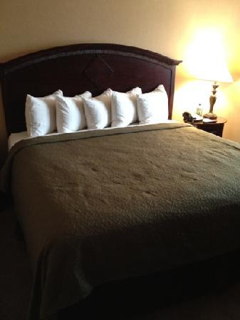 Quality Inn & Suites Airport: kingsize bed