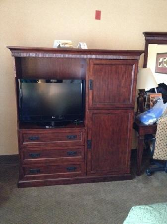 Quality Inn & Suites Airport: tv and fridge