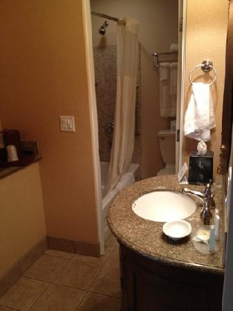 Quality Inn & Suites Airport: bathroom and sink