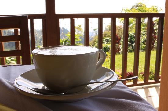 Finca Hamburgo Hotel Chiapas: A perfect cup!