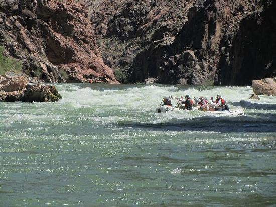 Arizona Raft Adventures: paddle raft finishing a successful run in the inner gorge